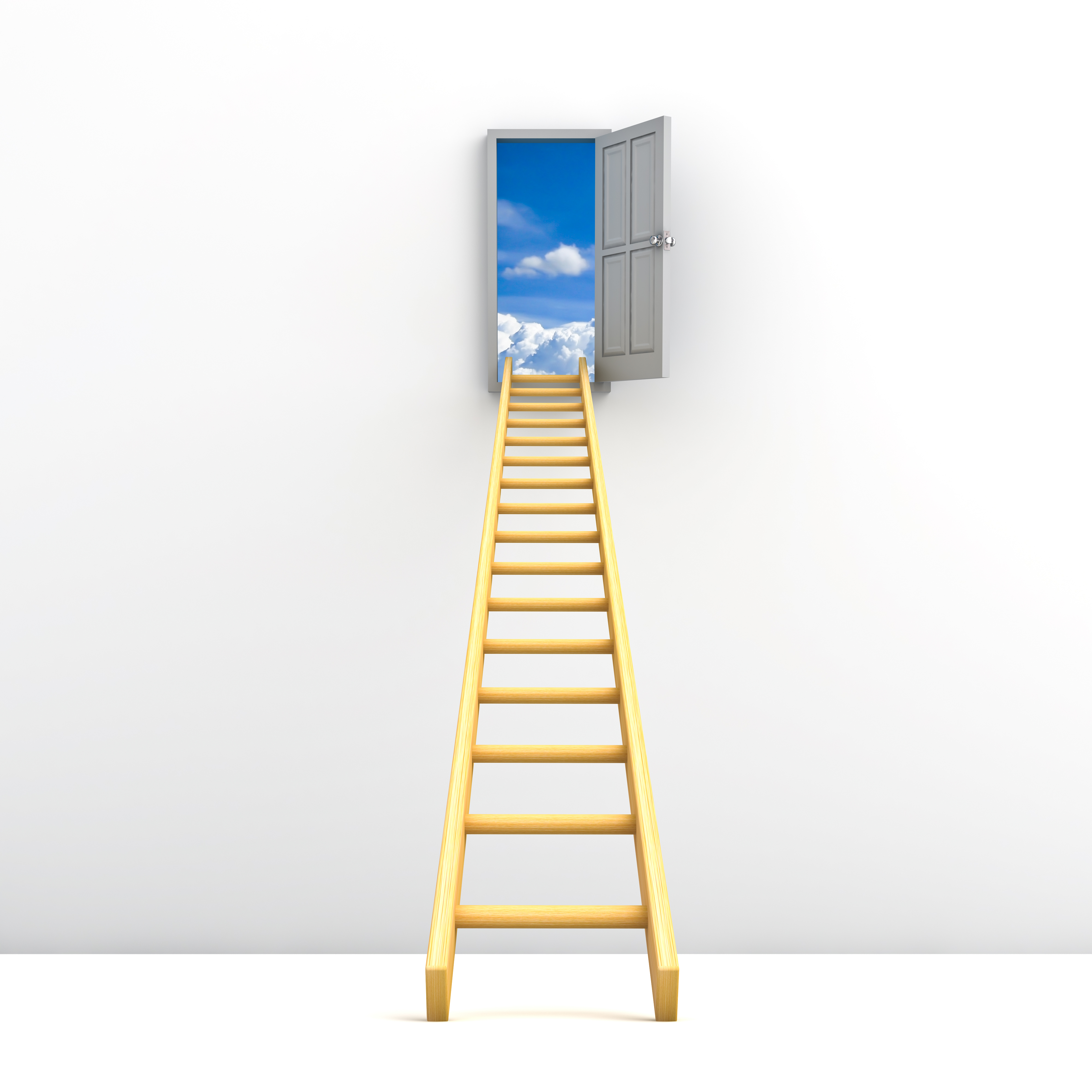 ladder so that you can success